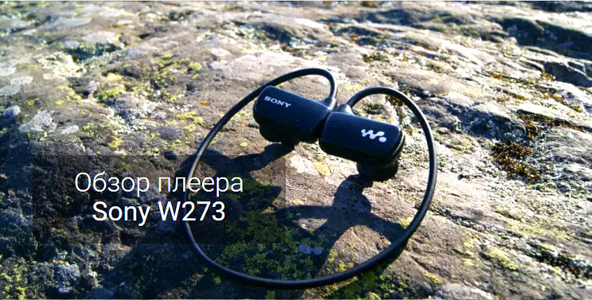 Обзор Sony Walkman W273